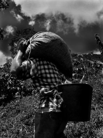 Fotografía No 6. Rodrigo Grajales