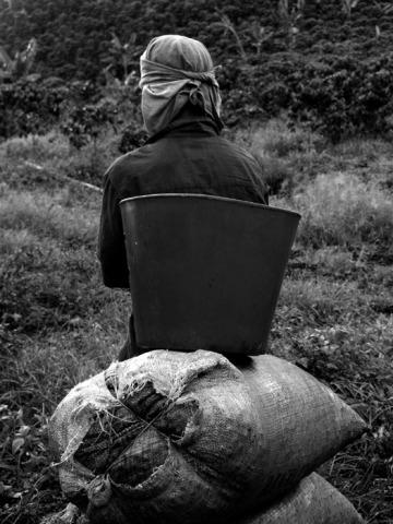 Fotografía No 7. Rodrigo Grajales